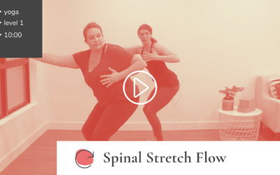 Spinal Stretch Flow