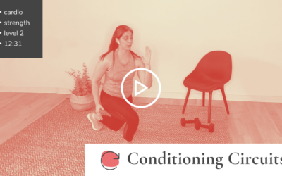 Athletic Conditioning Circuits