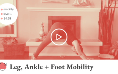 Leg, Ankle + Foot Mobility